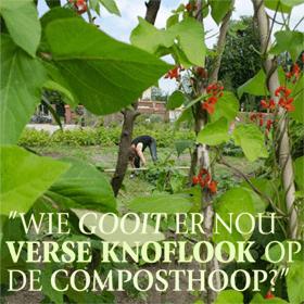 reportage over de Springertuin Zuilen voor het tijdschrift Groei & Bloei april 2013